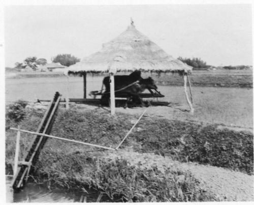img078-Irrigation-of-a-rice-paddy-B
