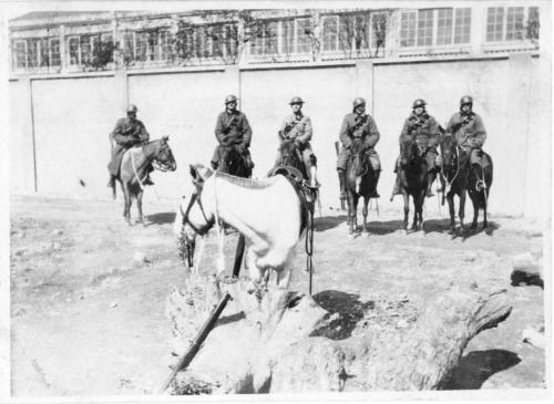 img230-Light-Horse-patrol-A